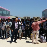 Lao động Việt Nam từ Lybia về nước