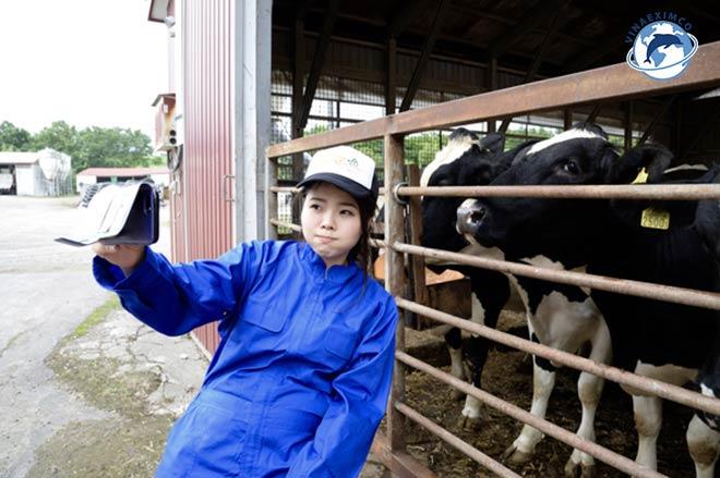 Kỹ sư nông nghiệp Nhật Bản kỹ sư chăn nuôi