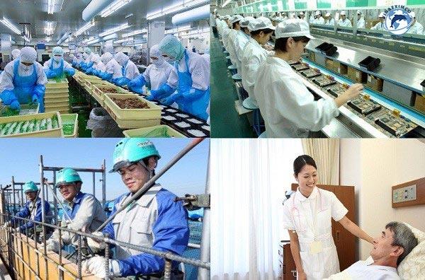 ngành nghề khi đi Đài Loan làm việc