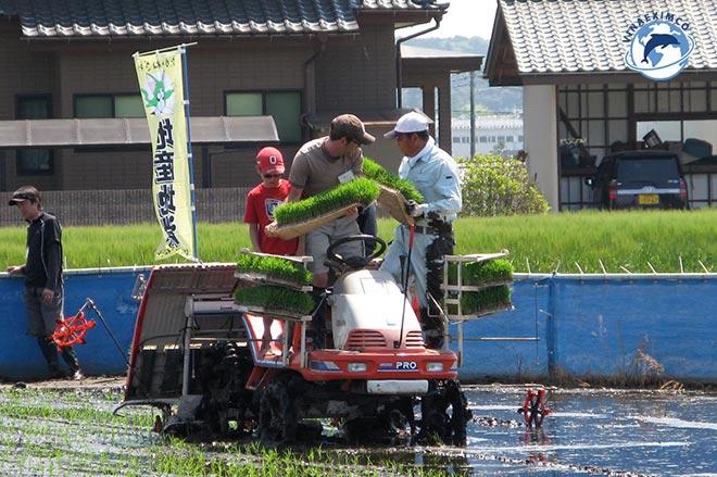4 Lý do nên làm việc tại Nhật Bản