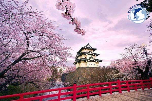 Khí hậu tại Nhật Bản cũng phân chia thành 4 mùa rõ rệt như Việt Nam